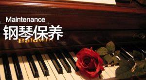 温湿度的转变,钢琴最容易损坏的几个方式